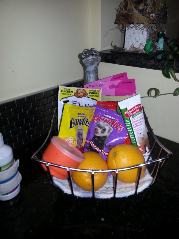 ferret mom's fruit bowl!