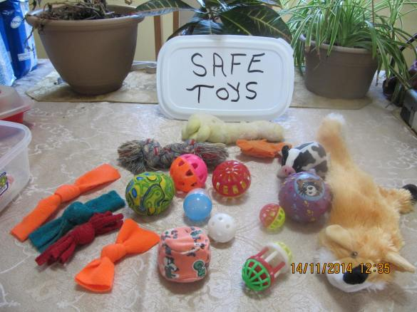 assortment of safe toys