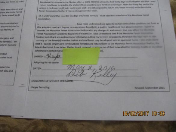 Jill Adoption page 2