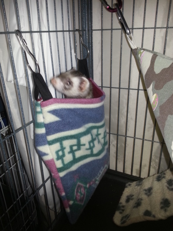 lulu-looking-out-of-her-new-hanging-sleep-sack