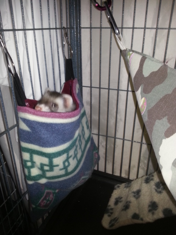 lulu-trying-out-her-new-hanging-sleep-sack